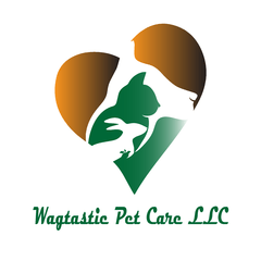 Dog walker and pet sitter in Boca Raton